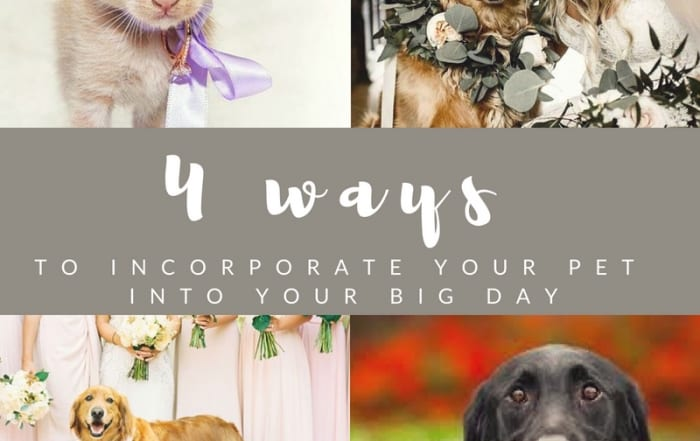 pets-in-your-wedding