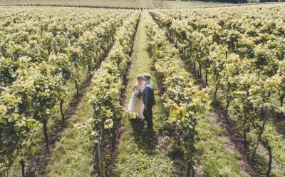 World's Most Beautiful Wine Regions for a Stunning Wedding